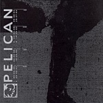 Pelican - Forecast for Today