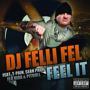 Feel It (feat. T-Pain, Sean Paul, Flo Rida & Pitbull) - Single Mp3 Download