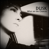 DUSK (GR) - What Are the Chances (Original Version) artwork