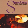 In Your Own Sweet Way - Kenny Werner, Marc Johns...