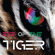 Eye of the Tiger (Single) - Eye of the Tiger