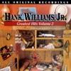 Hank Williams Jr Greatest Hits Vol 2