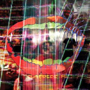 Centipede Hz – Animal Collective