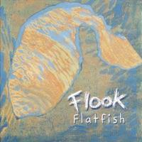 Flatfish by Flook on Apple Music
