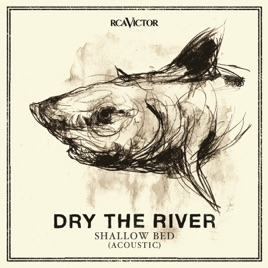 Shallow Bed Acoustic Dry The River