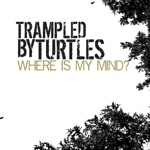 Trampled By Turtles - Where Is My Mind?