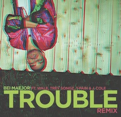 Trouble (Remix) [feat. Wale, Trey Songz, T-Pain, J.Cole & DJ Bay Bay] - Single MP3 Download