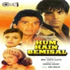 Hum Hain Bemisal (Original Motion Picture Soundtrack)