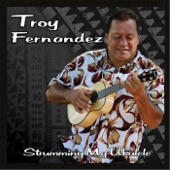 Troy Fernandez - Wild Side of Life