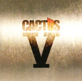 Cactus - The Groover