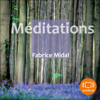 Fabrice Midal - Méditations artwork