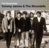 Tommy James & The Shondells - Crimson and Clover (Single Version)