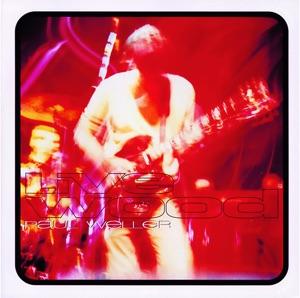 Paul Weller: Live Wood Mp3 Download