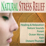 Natural Stress Relief: Healing & Relaxation Nature Sounds, Forest