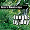Jungle By Day Nature Sounds Only