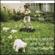 Songs for Polarbears (Bonus Track Version) - Snow Patrol