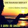 Om Namah Shivay Soulful Mantra Chanting