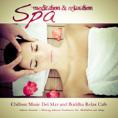 Spa: Meditation & Relaxation (Relaxing Natural Ambiences for Meditation and Sleep) [Chillout Music Del Mar and Buddha Relax Cafe]
