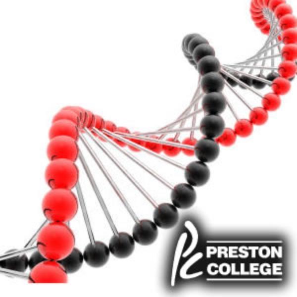 Biology: DNA