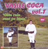 Vasile Coca - Cine-N Viata Noroc Are