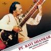 Ragas Hameer Gara Instrumental