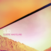 Elastic Wasteland
