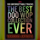 The Best Doo Wop Collection Ever - 100 Unforgettable Tracks