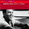 Marvin Gaye: Love Songs - Greatest Duets, Marvin Gaye