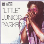 Little Junior Parker - I Need Your Love So Bad