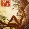 Rare Bird - Beautiful Scarlet