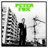 Start:03:28 - Peter Fox - Haus Am See