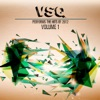 VSQ Performs The Hits Of 2012, Vol. 1, Vitamin String Quartet