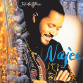 Just An Illusion  Najee - Najee