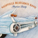 The Nashville Bluegrass Band - Holiday Pickin'