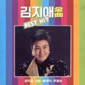 김지애 전곡 BEST HIT-김지애