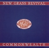 New Grass Revival - Wicked Path of Sin