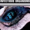 Infectious Organisms - No Sense bild