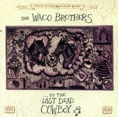 The Waco Brothers - Lake of Vinegar