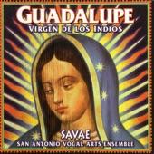 San Antonio Vocal Arts Ensemble - Dios Es Ya Nacido