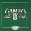 Cameo - Word Up artwork