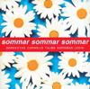 Radions Underhallningsorkester - Sommar, Sommar, Sommar bild