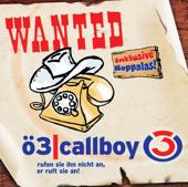Ö3 Callboy, Vol.3