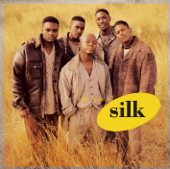 The Best of Silk