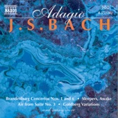 Triple Concerto in A Minor, BWV 1044: II. Adagio ma non tanto e dolce artwork