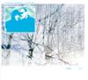 Bugge Wesseltoft & Sidsel Endresen - Try artwork