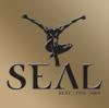 Crazy - Seal mp3