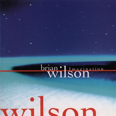 Imagination - Brian Wilson