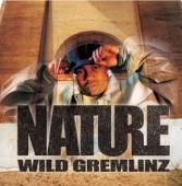 01 wake up nature music