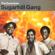 """Rapper's Delight (7"""" Single Version) - The Sugarhill Gang"""