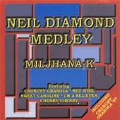 Neil Diamond Megamix: Cracklin Rose / Cherry Cherry / Kentucky Woman / I'm a Believer / Crunchy Granola / Sweet Caroline / Red Wine (Original Mix) artwork